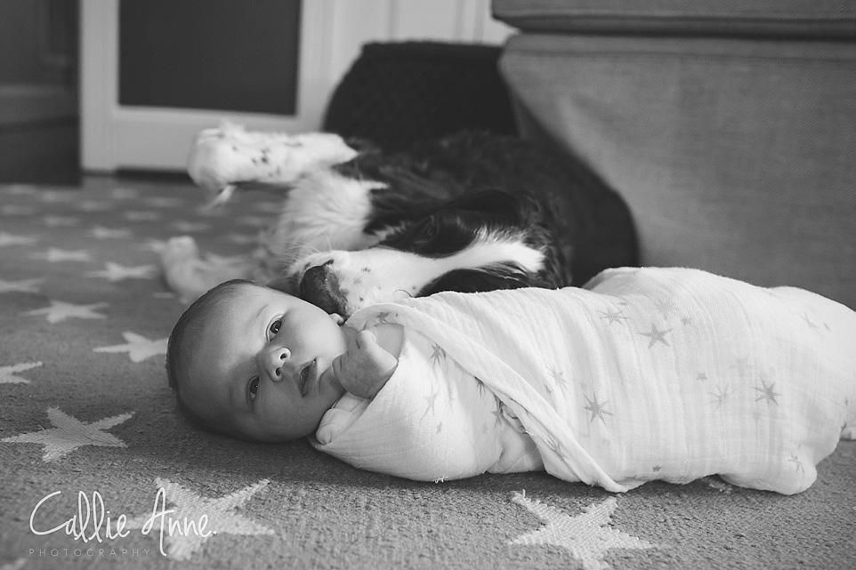 Waco Baby Photographer-05