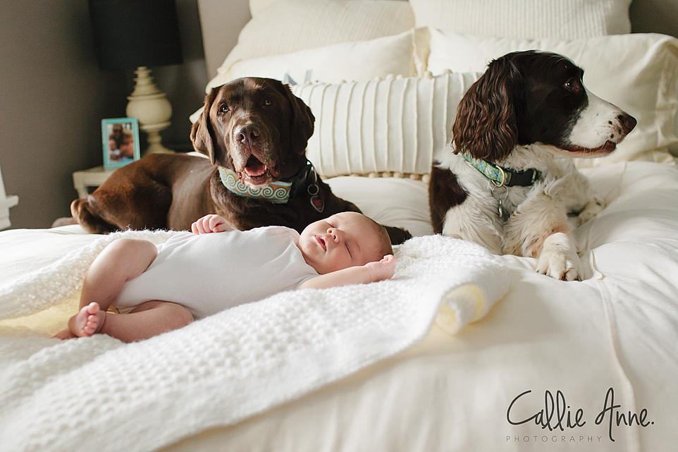 Waco Baby Photographer-08