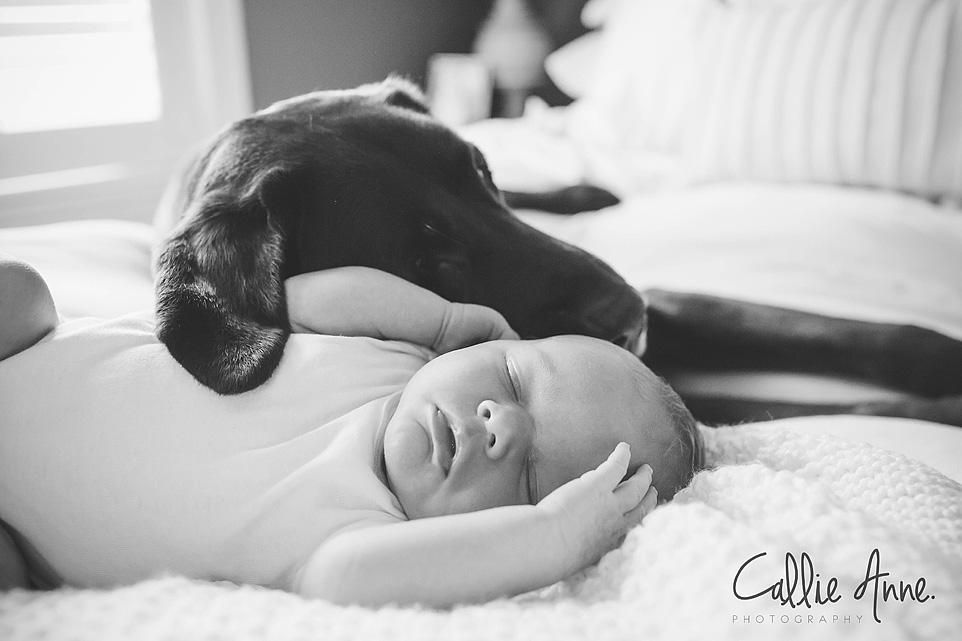 Waco Baby Photographer-09